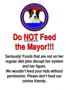 Do Not Feed the Mayor_web