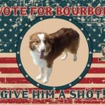 A Vote for Bourbon