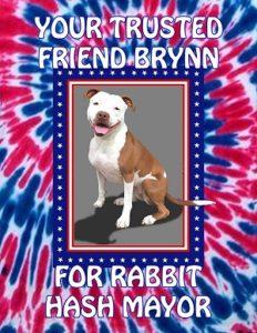 Vote for Brynn